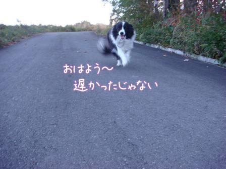 ああ~いい匂い_f0064906_19195767.jpg
