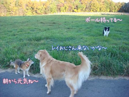 ああ~いい匂い_f0064906_19202597.jpg