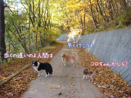 ああ~いい匂い_f0064906_1922369.jpg