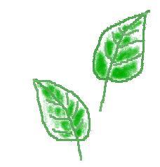 b0129008_19513964.jpg
