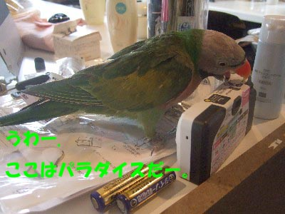 c0133013_14542573.jpg