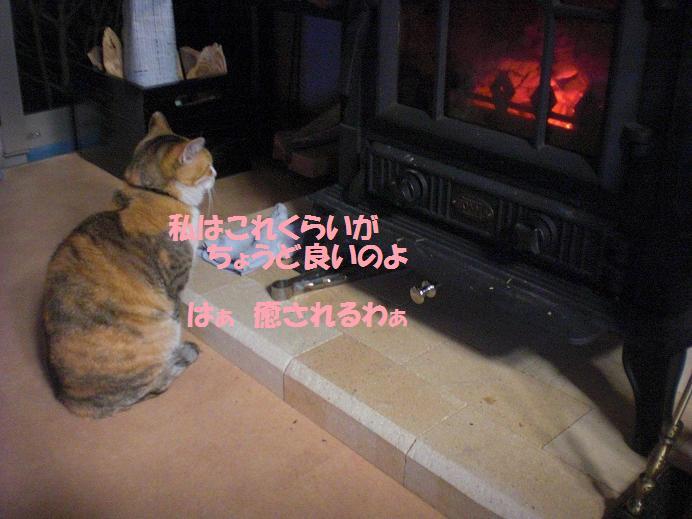 f0114128_22462160.jpg