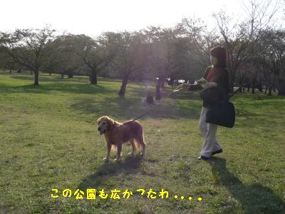f0118135_145428.jpg