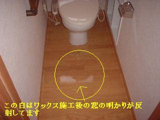 リフォーム工事最終日_f0031037_2034668.jpg