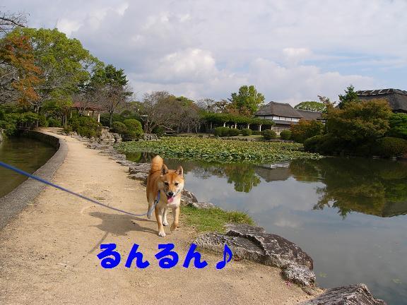 b0150665_20445737.jpg