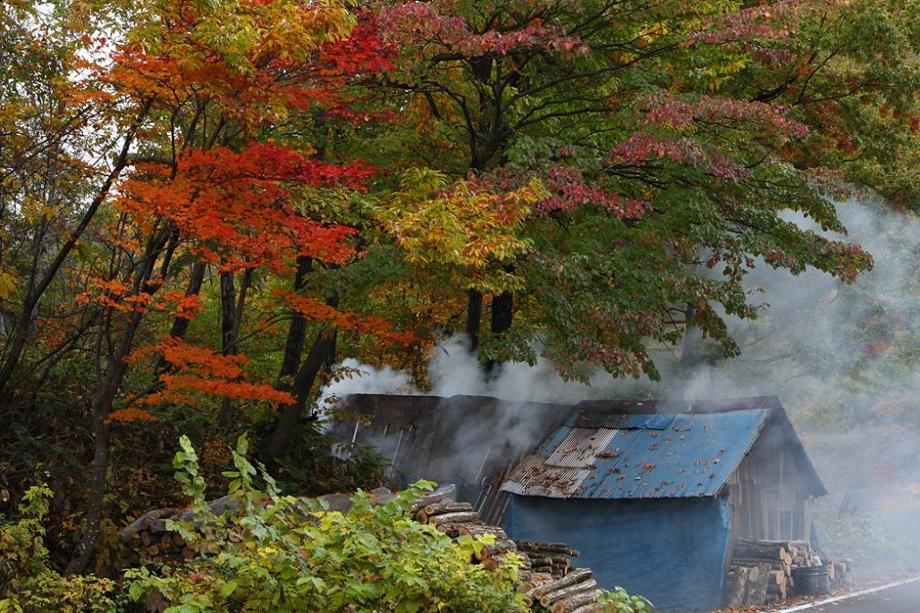 続、奥会津の紅葉を求めて・・・<9>昭和村付近でのスナップから_e0143883_2064699.jpg