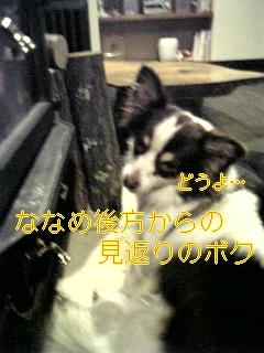 f0148927_10272968.jpg