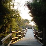 湖のまわりを散歩する walk by the side of the lake _e0131432_10362630.jpg