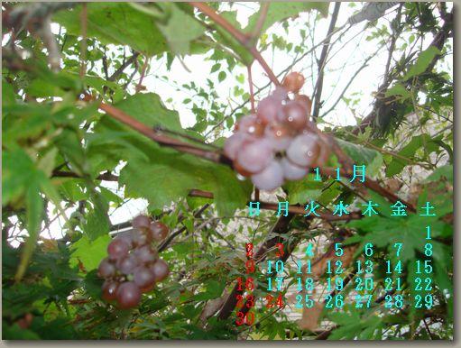 b0043355_21271838.jpg