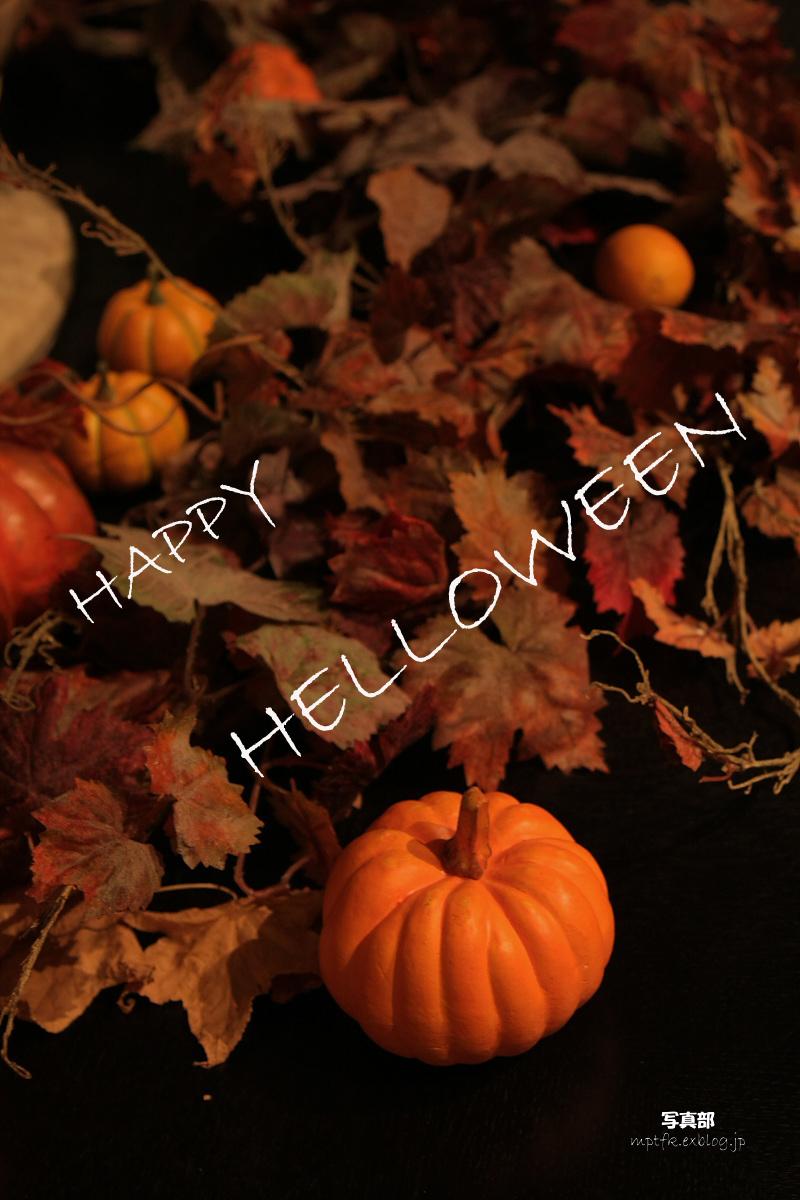 Happy Halloween _f0021869_039428.jpg