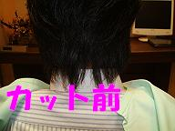 c0154876_1624189.jpg