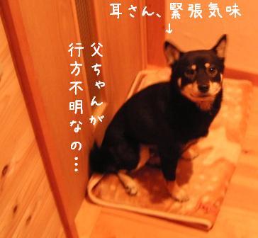 f0068501_9242679.jpg
