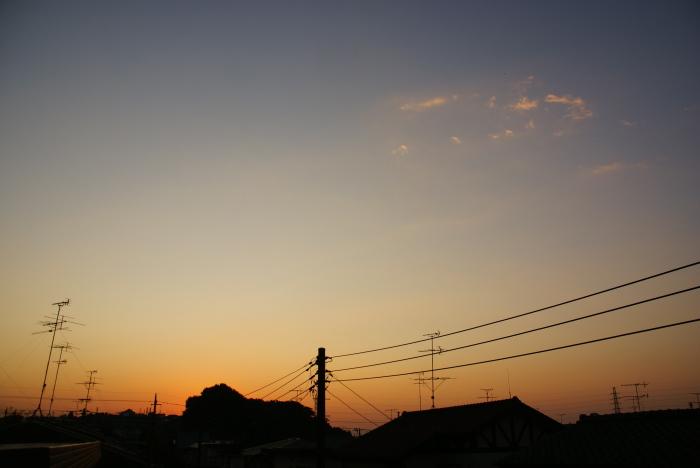 ほわっと赤の朝_e0077521_2126496.jpg