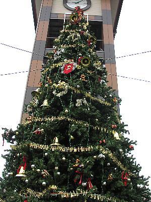 メリークリスマス_c0141652_17493923.jpg