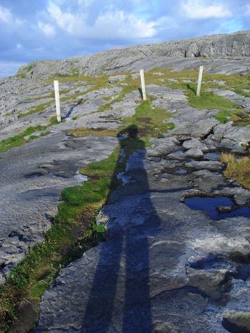Cliffs of Moher_f0084358_6191656.jpg