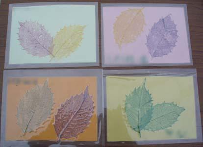 秋とかくれんぼ_b0049307_159172.jpg
