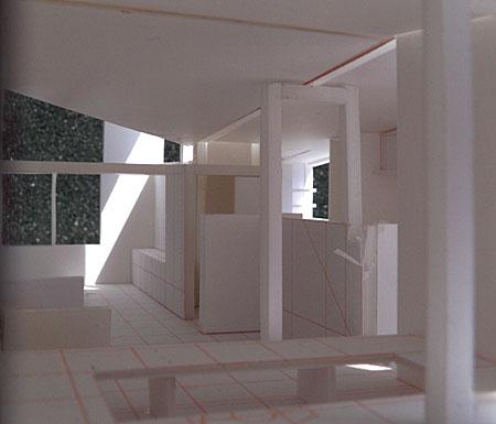 白井T邸 08案模型 すべてがnになる平面_d0017039_174856100.jpg