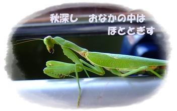 b0018441_19472799.jpg