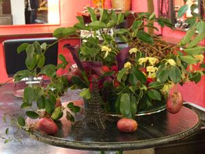 No.16 「Quel fruit est ceci?」_e0013089_1919155.jpg