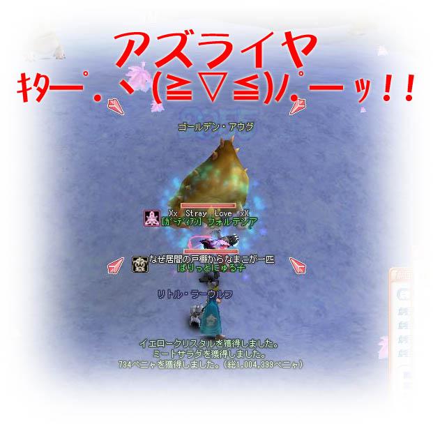 c0082493_14511436.jpg