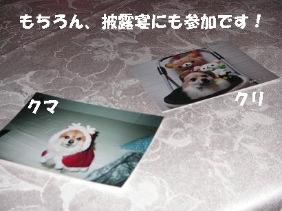 c0179136_002866.jpg