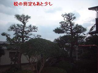 f0031037_195098.jpg