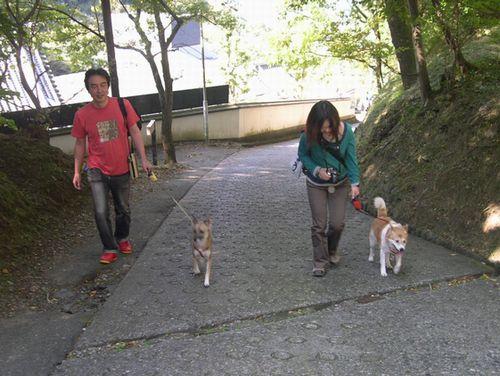 マリンちゃんと生駒山デート♪_b0025947_1817129.jpg