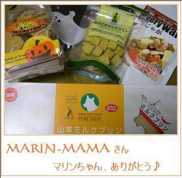 マリンちゃんと生駒山デート♪_b0025947_20251993.jpg