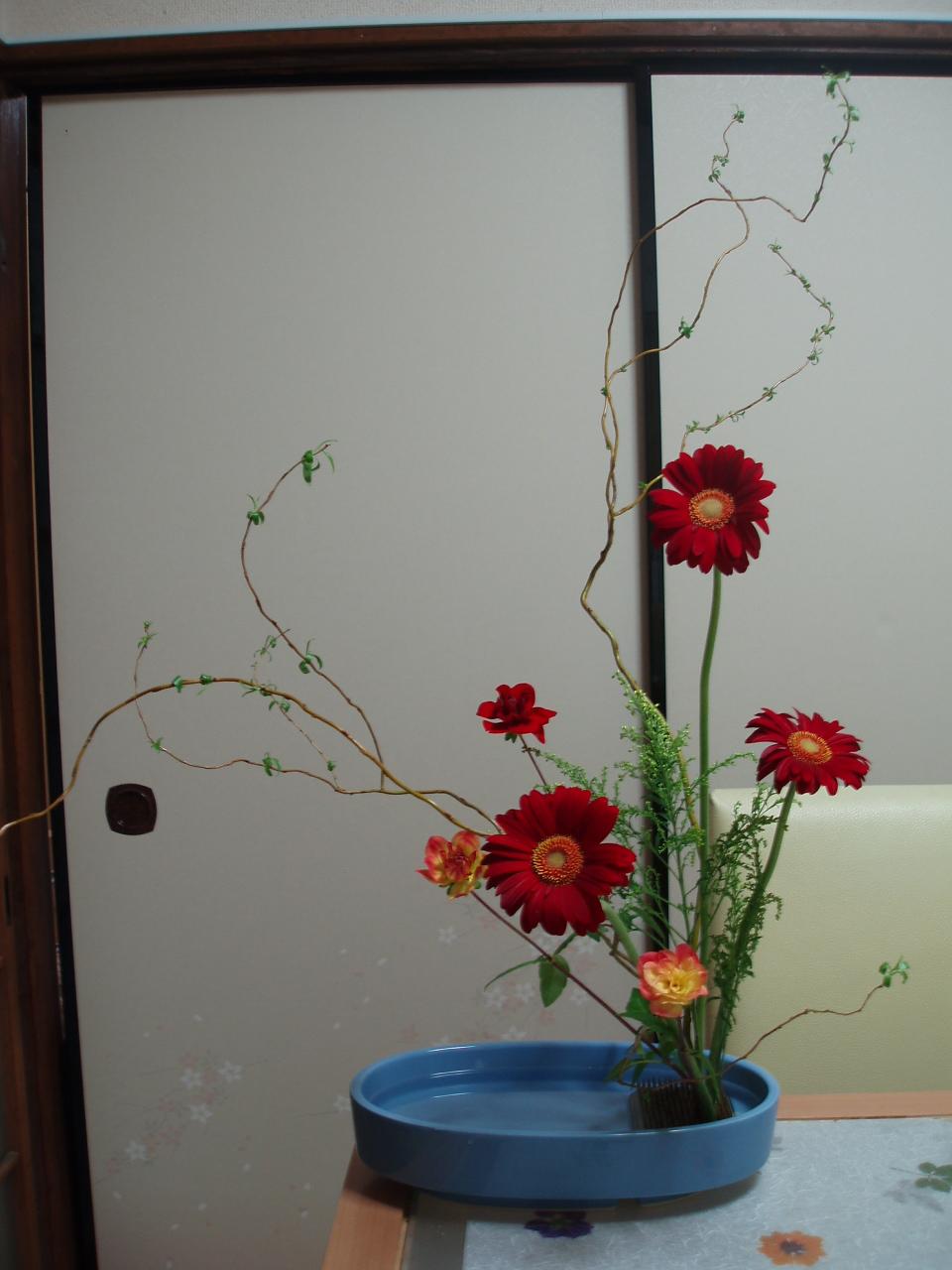 久々のお稽古花「ドラゴン柳とガーベラ」♪_b0137453_10234157.jpg