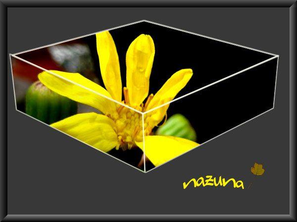 f0047071_13354687.jpg
