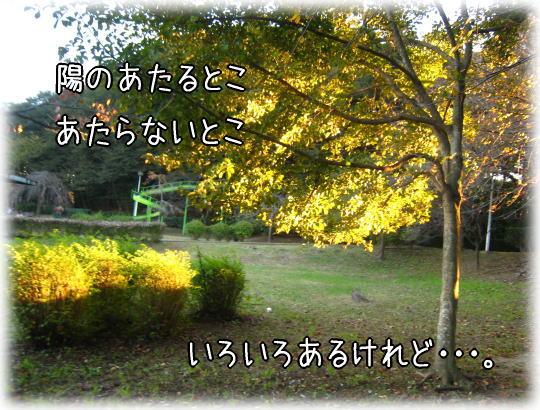 f0187974_22593816.jpg
