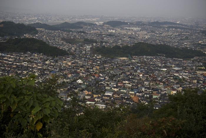 カル公と井野山へ_a0096313_115535100.jpg