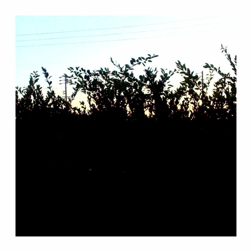f0160916_2012397.jpg