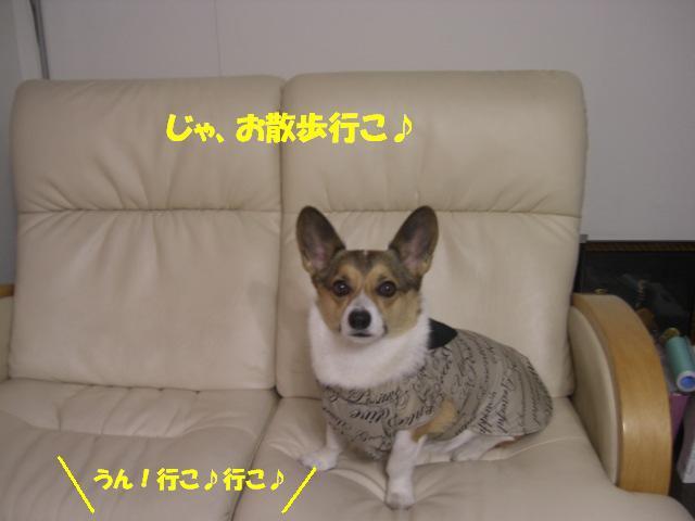 f0182121_1934254.jpg