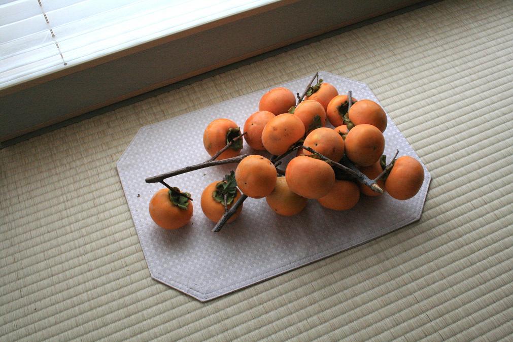 柿のゆめ_a0107574_728949.jpg