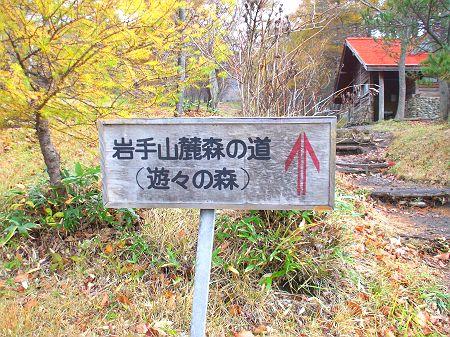 秋の新人戦_c0165824_17515987.jpg