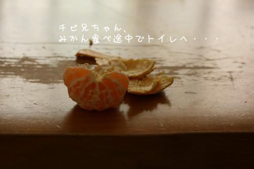 b0143835_1782962.jpg