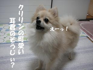 c0179136_19383192.jpg