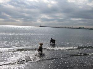 釣りと海♪_b0148945_16411249.jpg