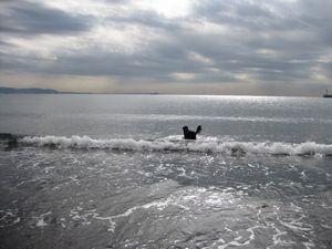 釣りと海♪_b0148945_1642948.jpg