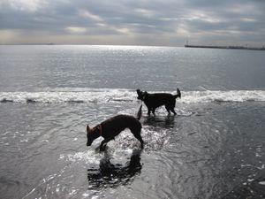 釣りと海♪_b0148945_1644899.jpg
