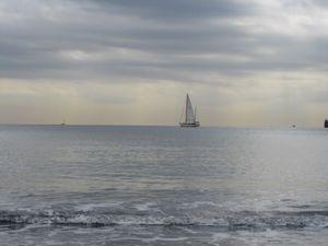 釣りと海♪_b0148945_16501569.jpg