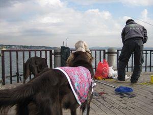 釣りと海♪_b0148945_16584535.jpg