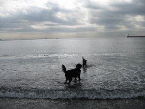 釣りと海♪_b0148945_182335.jpg
