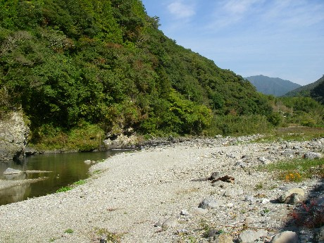 小川川冬季釣り場特別採捕。_c0153951_1610571.jpg