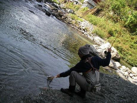 小川川冬季釣り場特別採捕。_c0153951_162249.jpg