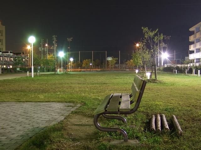 坂町平成ヶ浜の美しき夜景散歩③_b0095061_9141886.jpg