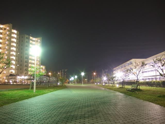 坂町平成ヶ浜の美しき夜景散歩③_b0095061_914369.jpg