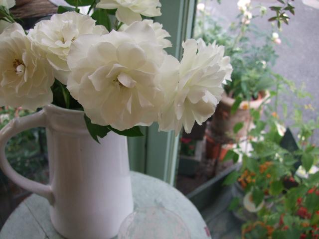オークリーフ(紅葉と薔薇と草花と)_f0049672_1238329.jpg