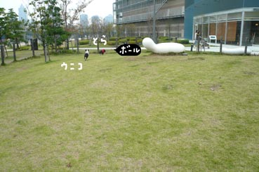 f0170072_22413383.jpg